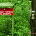 Sołectwo Łupki, gm. Wleń